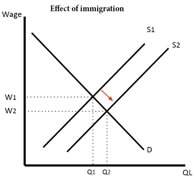 effect-immigration-increased-supply