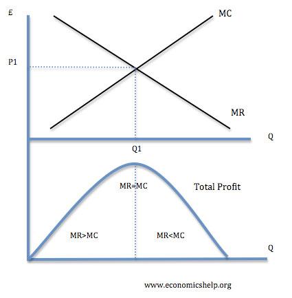 profit maximisation model