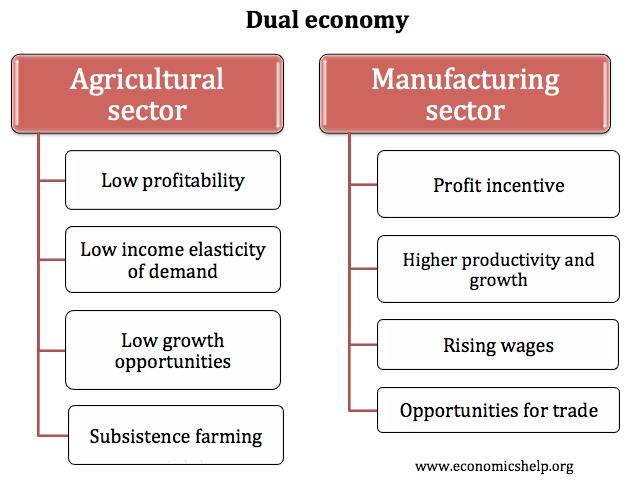 dual-economy