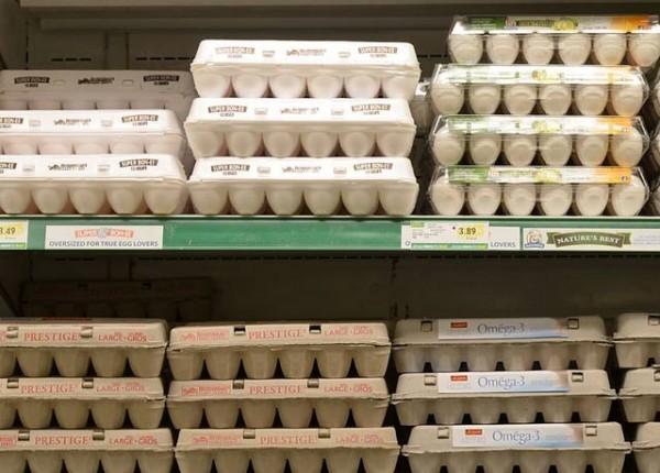 GroceryStoreEggs