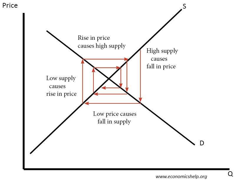 cobweb-theory-decreasing-volatility