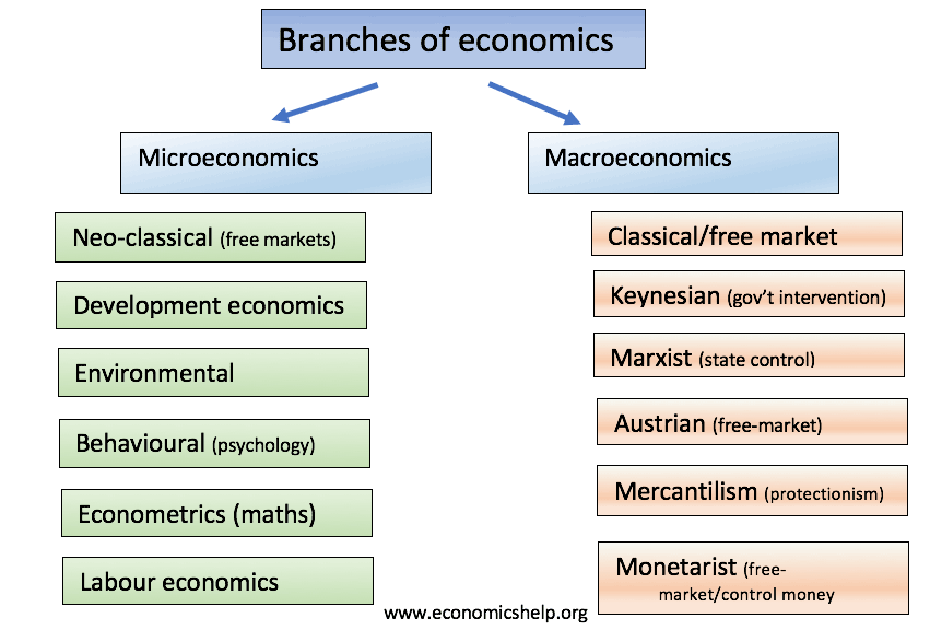 Branches of economics