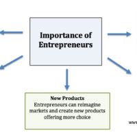 importance-of-entrepreneurs